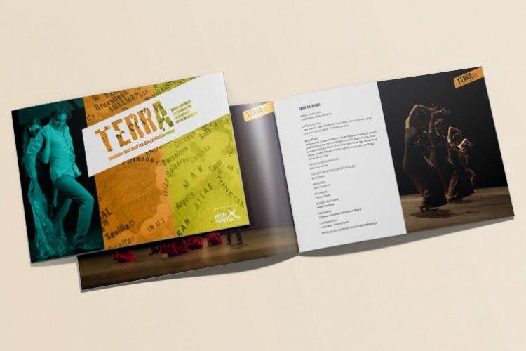 freelance-disenyo-grafico-valencia-terra-2